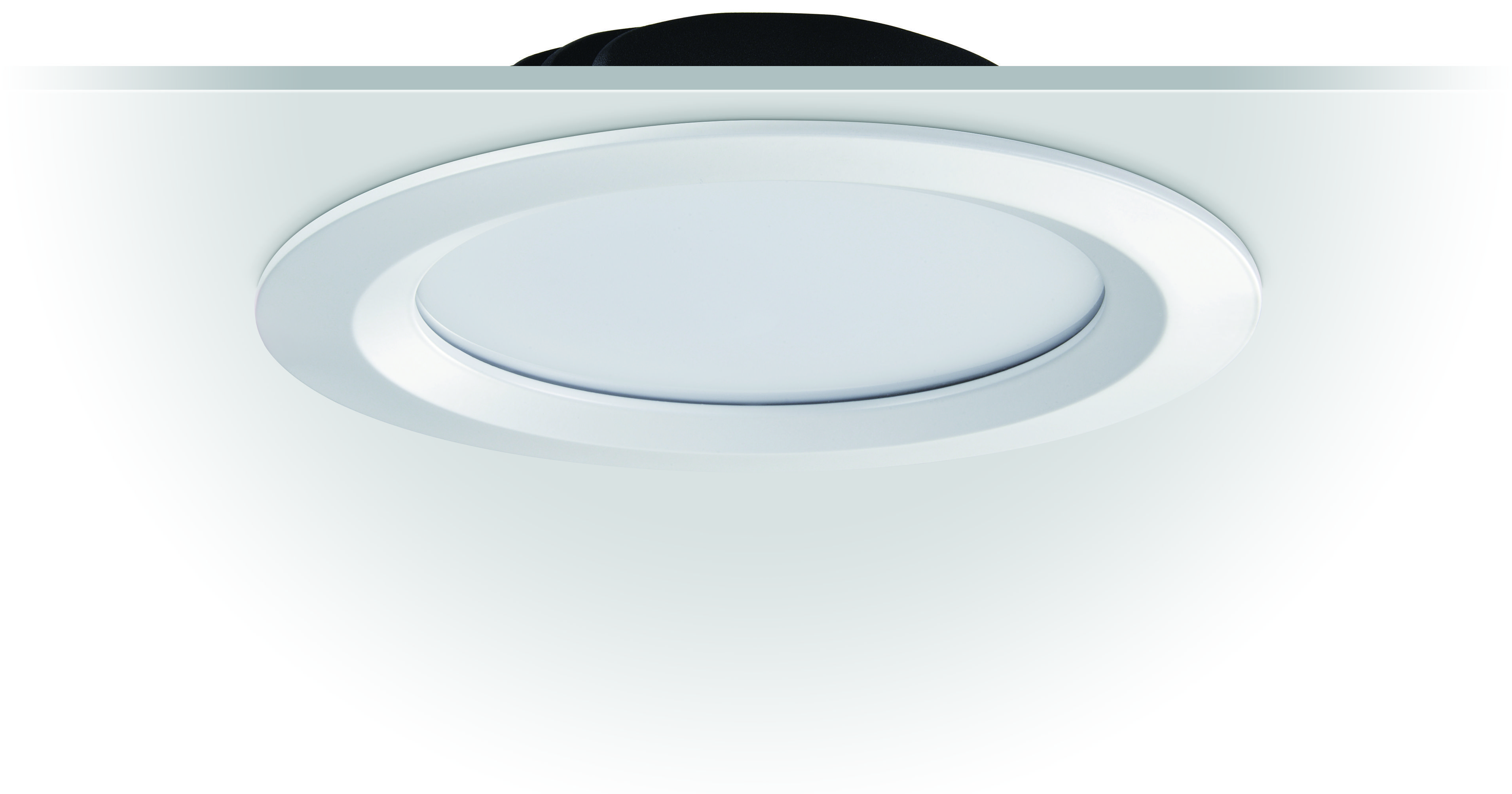downlight-frosted