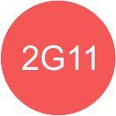icon2g11